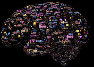 brain-998996_960_720
